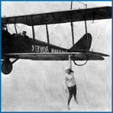 bessie-and-bill-black-wings-flying-free