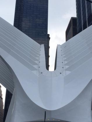 oculus-wings